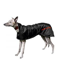 Greyhound Back on Track takki