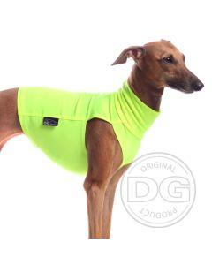 Neonvärinen koiran huomiopaita