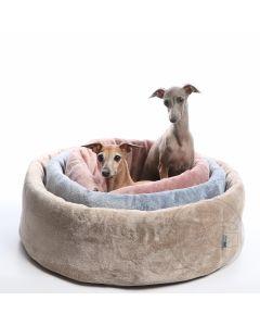 DG Leggero koiranpeti