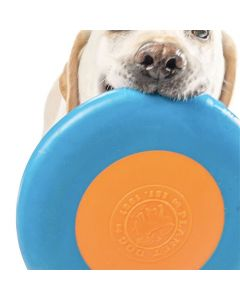Planet Dog Zoom Flyer