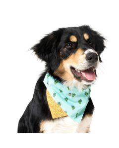 Huivi koiran pantaan