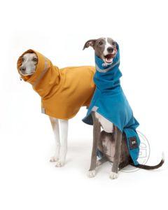 DG Oudoor Soft Shell koiran sadetakki
